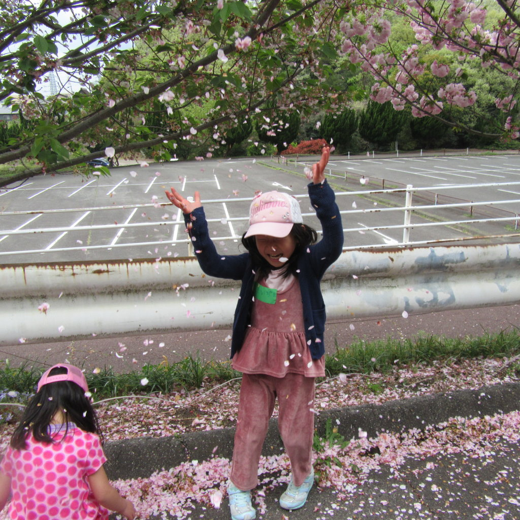 桜吹雪2018